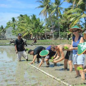 Yuk Kenalan Dengan Sustainable Tourism