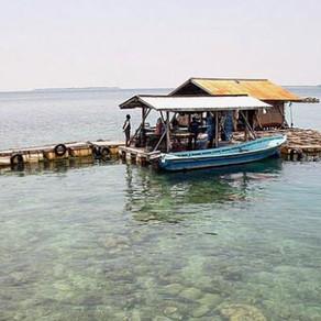 Selain Potensi Pariwisata, Ini Dia 5 Daerah Penghasil Mutiara Terbaik di Indonesia!