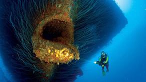 5 Negara Oceania ini Wajib Masuk ke Dalam List Traveling Tahun Depan!