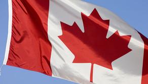 Boneka Beruang Bisa Berjalan di Kanada!
