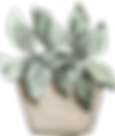 potted_0013_14.png