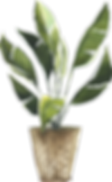 potted_0014_15.png