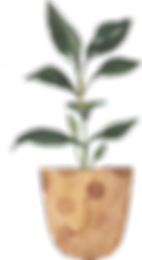 potted_0008_9.png
