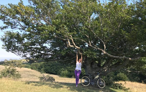 Tour in E-bike nell'entroterra maceratese