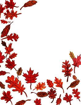 Leaves 002.jpg