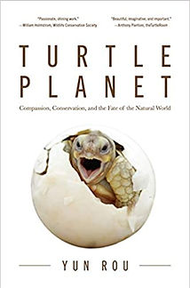 turtle_planet.jpg