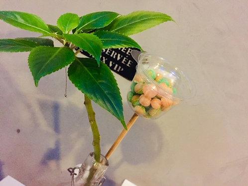 fleur de bonbons