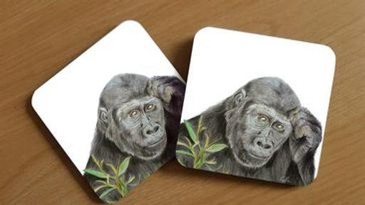 Gorilla Coaster (1)