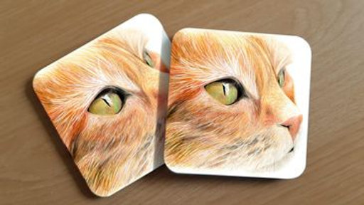 Cat Coaster (1)
