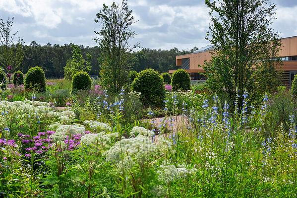 Bridgewater Garden.jpg