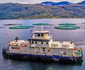 Fôr-flåten Snetind - Kleiva Fiskefarm.jp