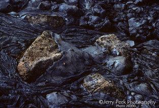 Rocks in lava, James Island, Galapagos