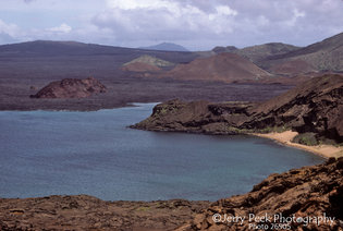 The Galapagos Islands are mostly volcanic lava