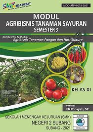 AGRIBISNIS TANAMAN SAYURAN-Sem 3-01.jpg