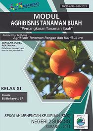 agribisnis tanaman buah bu eti  kls xi-0