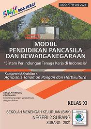 PPKN XI SIstem tenaga kerja di INdonesia