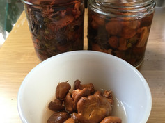 Pickled wild chanterelles & huckleberries