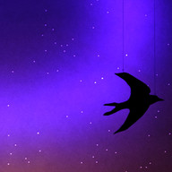 Bea Box (swallow)