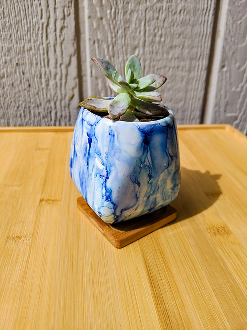 Hand painted rhombus succulent planter