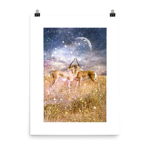 Gazelle Magick