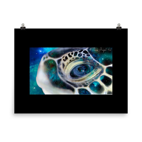 Eye of the Ancient, 15% donated to conservation