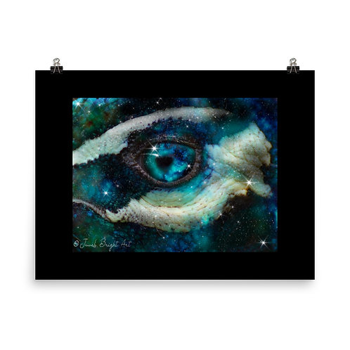 Eye of the Majestic, 15% donated to conservation