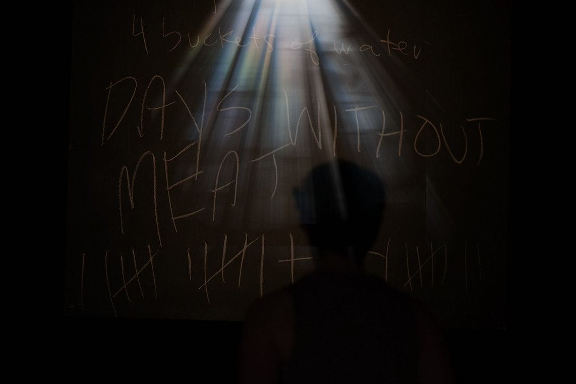 """Production photo: a silhoutte of a person facing a chalkboard that reads """"Days without meat"""". The image is now darker, but a spotlight illuminates the text: Jessi Piggott, PhD, Theatre & Performance"""