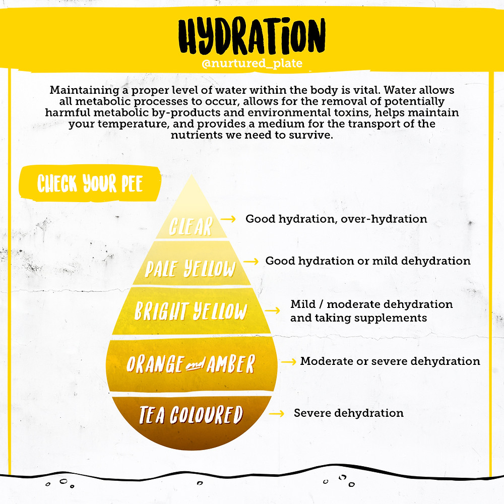 image of a drop with a gradient in the yellow colour with the description of how to check the colour of your urine to know if you are dehydrated. the lightest being over hydrated, and the darkest nearly brown severely dehydrated