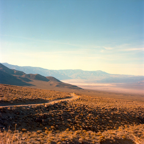 Desert2013.jpg