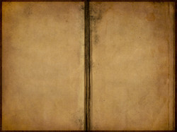 books_texture3032