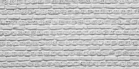 Ladrillo Perforado Blanca