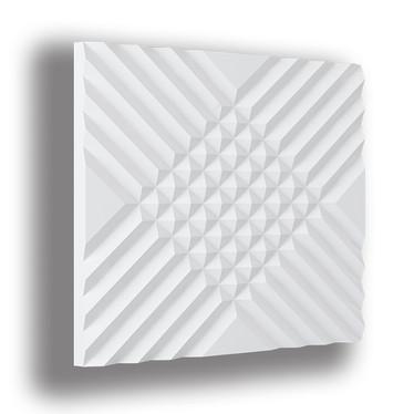 FS110 Akustik