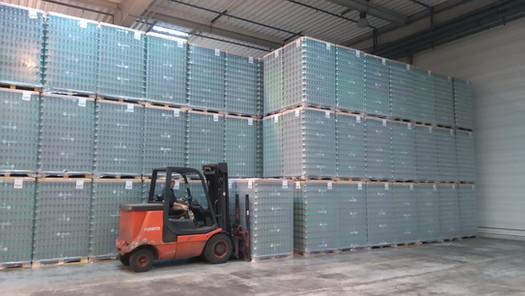 Logistique ex et in situ