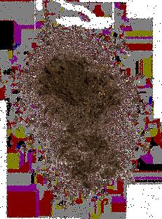 dirt1.png