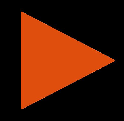 orange_triangle.png
