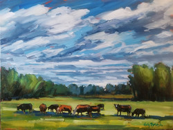 """Angus in Strathcona County 12""""x16"""""""