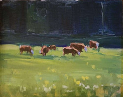 All about the Cows
