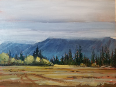 "Low Cloud in Nordegg 12""x16"" $525.00 12""x16"""