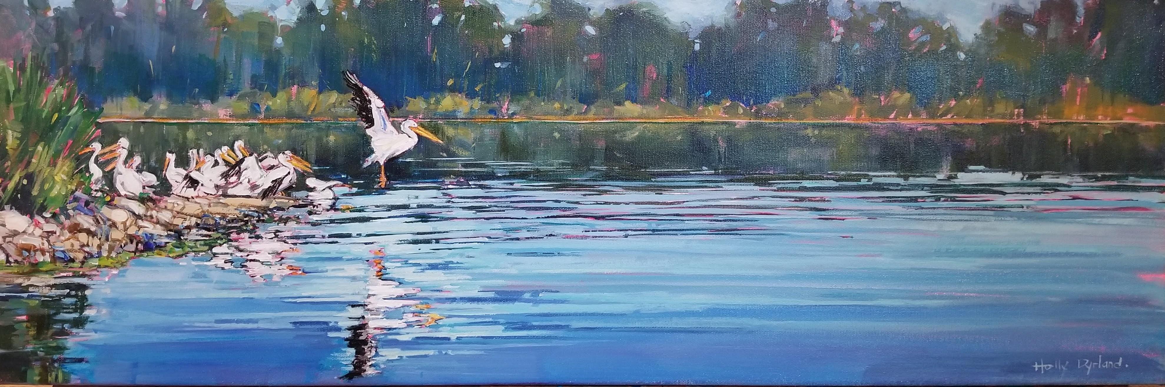 Pelicans at Pinehurst