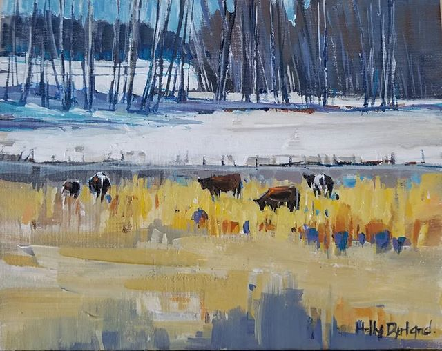 Cows in the Corn