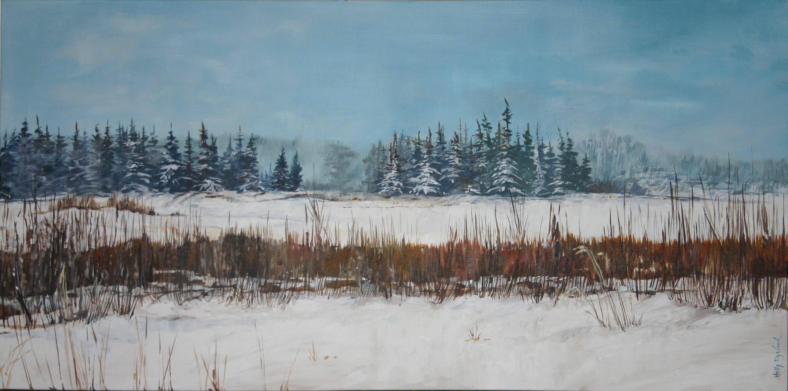 Hastings Lake Winter