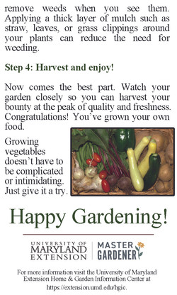 Victory Gardens cont.