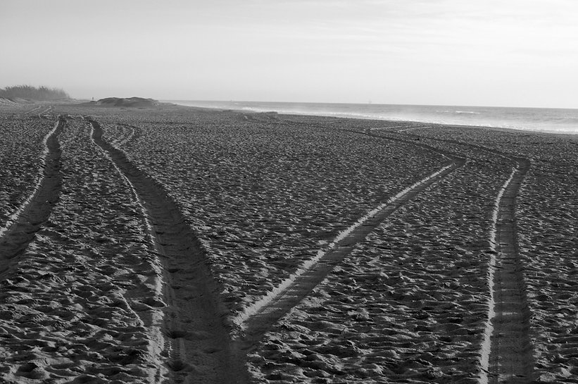 black-and-white-paths-in-the-sand (1).jp