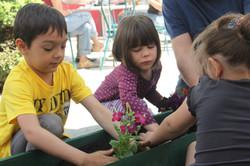 Copiii iubesc natura