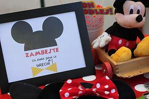 Petrecere tematica Mickey- Casa Pixie