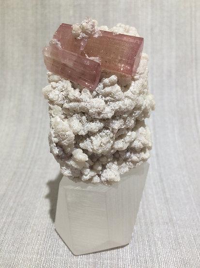 Pink Tourmaline, Lithium Mica and Cleavelandite
