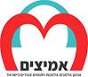 Amitsim Logo 250X218.png