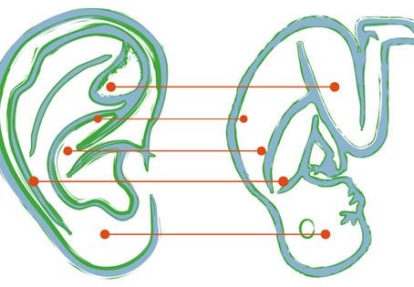 L'oreille, Les secrets du bien-être