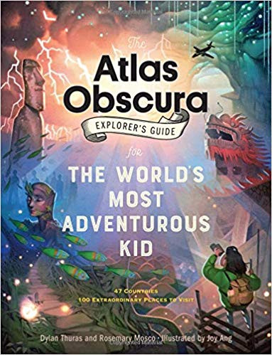 nature book for kids kids explorer guide