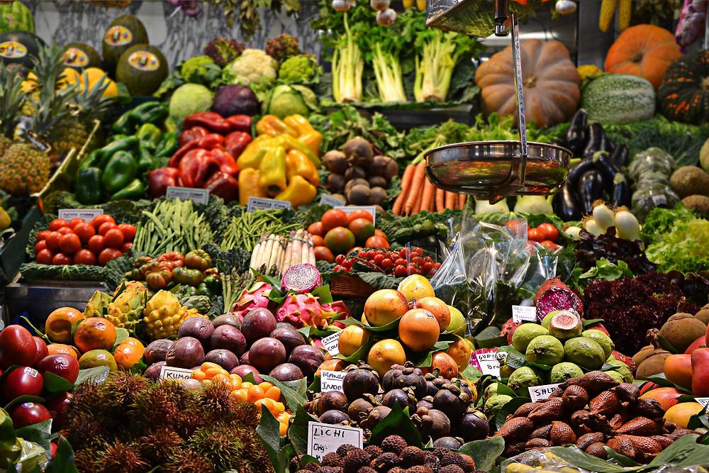 planet protector plant based diet vegetarian vegan